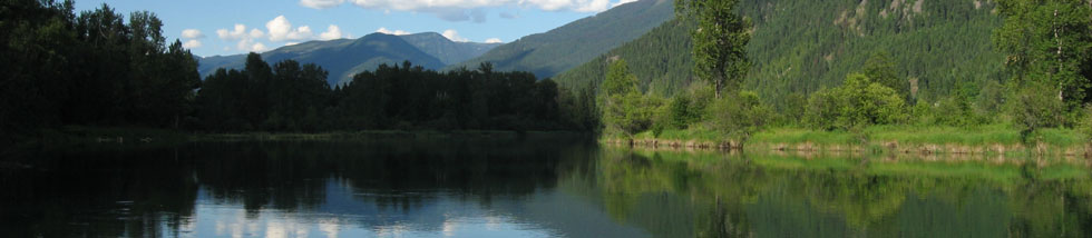 Slocan River looking north - photo by Leonard Block