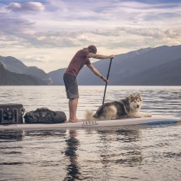 man and dog on paddleboard going along the lake
