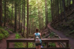 woman looks at stream on hiking route