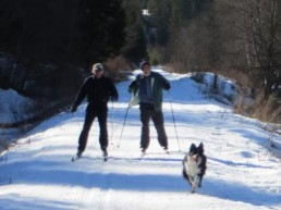 two people cross-country skiing with dog by a lake